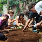 Volunteers-planting-seeds-395x252