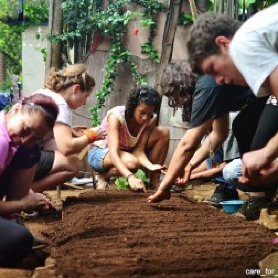 Volunteers-planting-seeds-395x252